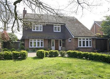 Thumbnail 5 bedroom detached house for sale in Winkton, Christchurch, Dorset