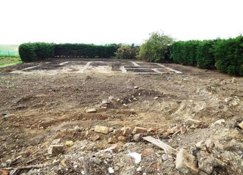 Thumbnail Land for sale in Littleport, Ely, Cambridgeshire