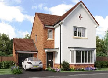 "Thumbnail 4 bedroom detached house for sale in ""Esk"" at Sophia Drive, Great Sankey, Warrington"