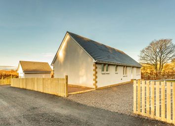 Thumbnail 4 bed detached bungalow for sale in Coupar Angus, Blairgowrie