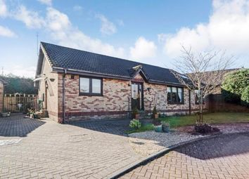 Thumbnail 2 bedroom bungalow for sale in Castle Court, Castlecary, Cumbernauld, North Lanarkshire