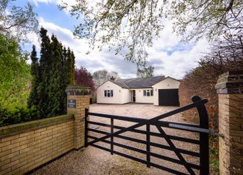 Thumbnail 3 bed detached bungalow for sale in Norwich Road, Brooke