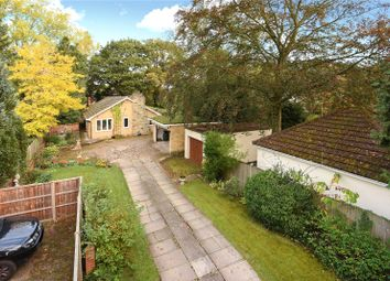 Thumbnail 3 bed detached bungalow to rent in Frog Hall Drive, Wokingham, Berkshire