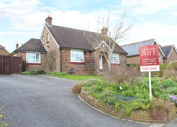 Thumbnail 3 bed bungalow for sale in Water Lane, Angmering, Littlehampton