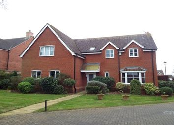 Thumbnail 5 bedroom detached house to rent in The Pines, Bushby, Leicester