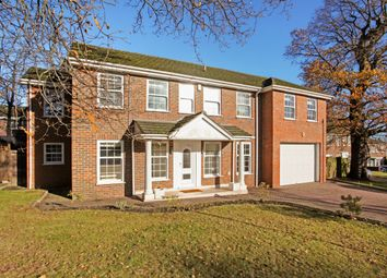 Thumbnail 6 bed property to rent in Illingworth, Windsor