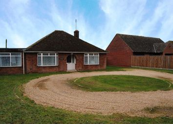Thumbnail 4 bedroom bungalow to rent in Ixworth Road, Stowlangtoft, Bury St. Edmunds