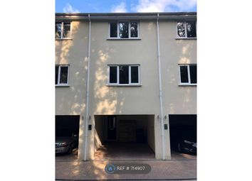 Thumbnail 3 bed terraced house to rent in Marble Villas, Torquay