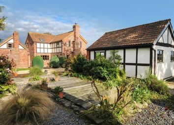 Thumbnail 4 bed cottage for sale in Madley, Hereford