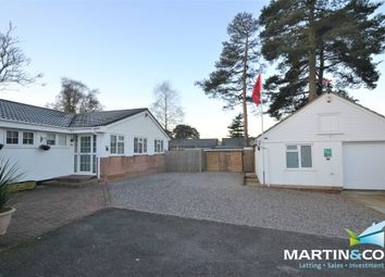 Thumbnail 3 bed detached bungalow for sale in Pineholt Close, St. Ives, Ringwood