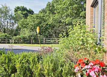 Thumbnail 4 bedroom detached house to rent in Inwood Close, Woking