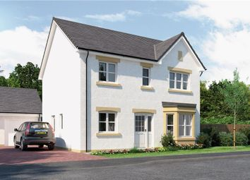 "Thumbnail 4 bed detached house for sale in ""Douglas"" at Glendrissaig Drive, Ayr"