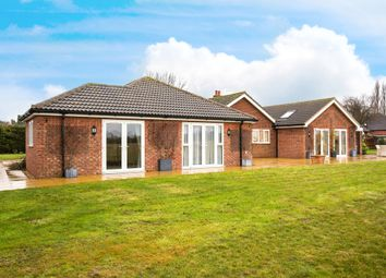 Thumbnail 5 bedroom detached bungalow for sale in St. Ives Road, Hilton, Huntingdon