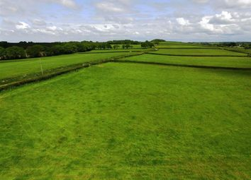 Thumbnail Land for sale in Broadwoodkelly, Winkleigh