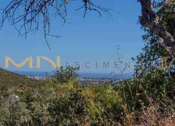 Thumbnail Land for sale in Clareanes, Close To Loulé (São Clemente), Loulé, Central Algarve, Portugal
