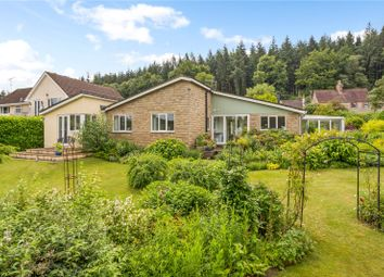 Thumbnail 4 bed bungalow for sale in Clay Street, Crockerton, Warminster, Wiltshire