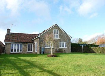 Thumbnail 4 bed detached bungalow to rent in Drove Close, Stourton Caundle, Sturminster Newton, Dorset