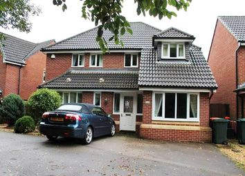 Thumbnail 4 bed detached house to rent in Dewberry Grove, Newport
