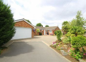 Thumbnail 6 bed bungalow for sale in Okebourne Park, Swindon, Wiltshire