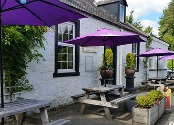 Thumbnail Hotel/guest house for sale in Bargrennan, Newton Stewart