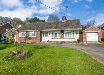 Thumbnail 3 bed detached bungalow for sale in North Road, Great Yeldham, Halstead