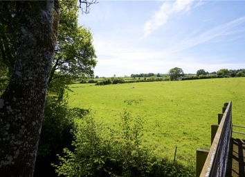 Thumbnail Land for sale in Combe Raleigh, Honiton, Devon