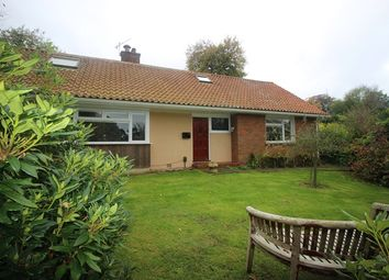 Thumbnail 4 bed detached house to rent in Blackstone Close, Redhill