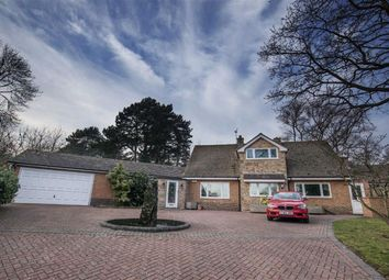 Thumbnail 3 bedroom detached house for sale in Bramcote Drive, Nottingham