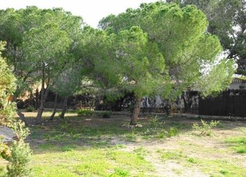Thumbnail Land for sale in Cabo Roig, Valencia, Spain