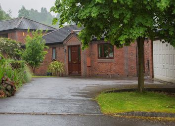 Thumbnail 4 bed detached house for sale in The Hawthorns, Derby