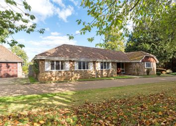 Thumbnail 4 bed detached bungalow for sale in Mcalmont Ridge, Godalming, Surrey