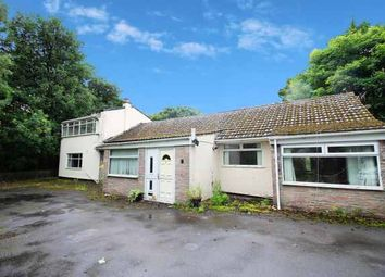 Thumbnail 4 bed detached bungalow for sale in Valley Gardens, Burnley, Lancashire