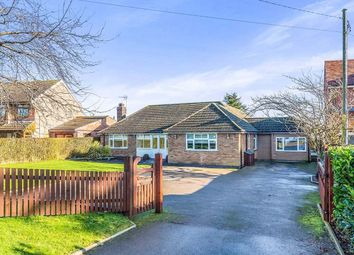 Thumbnail 5 bed bungalow for sale in Hinckley Road, Dadlington, Nuneaton
