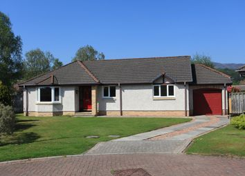 Thumbnail 3 bed detached bungalow to rent in Tay Avenue, Comrie