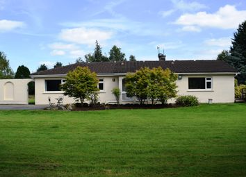 Thumbnail 4 bed bungalow for sale in Three Castles, Manor Kilbride, Wicklow