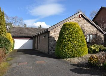 Thumbnail 3 bed detached bungalow to rent in Loughbrow Park, Hexham