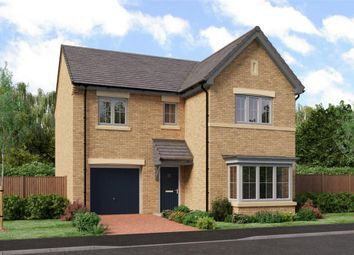 "Thumbnail 4 bedroom detached house for sale in ""The Seeger"" at Low Lane, Acklam, Middlesbrough"