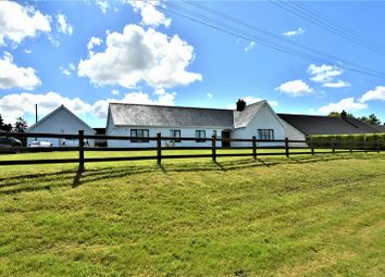 Thumbnail 4 bed bungalow for sale in Llanllwni, Pencader