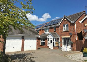Thumbnail 4 bed detached house for sale in Buttercup Close, Corby, Northamptonshire