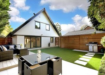 Thumbnail 4 bed detached house for sale in Snows Paddock, Windlesham, Surrey