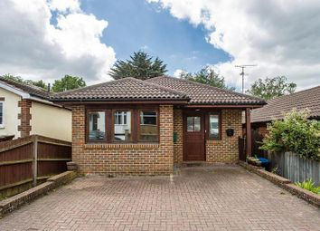 Thumbnail 4 bed detached bungalow for sale in Sunny Rise, Chaldon, Caterham