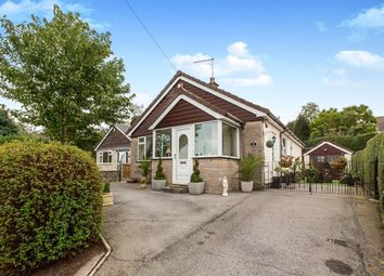 Thumbnail Bungalow to rent in Radnor Close, Congleton