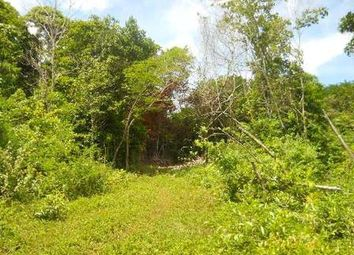 Thumbnail Land for sale in Oracabessa, St Mary, Jamaica