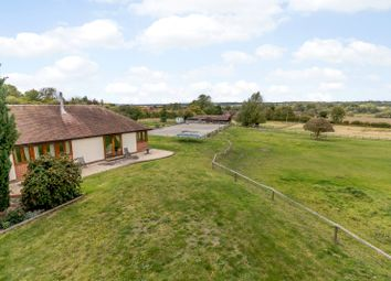 Thumbnail 4 bed bungalow for sale in Brimpton Road, Brimpton, Reading