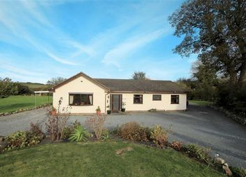 Thumbnail 4 bed detached bungalow for sale in Pen Y Ball, Holywell, Flintshire