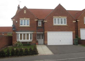 Thumbnail 4 bed detached house to rent in Vindex Close, Lincoln