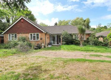 Thumbnail 4 bed detached bungalow for sale in Ifield Road, Charlwood, Surrey