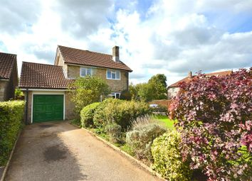 Thumbnail 3 bed detached house for sale in Orchard Mead, Broadwindsor, Beaminster