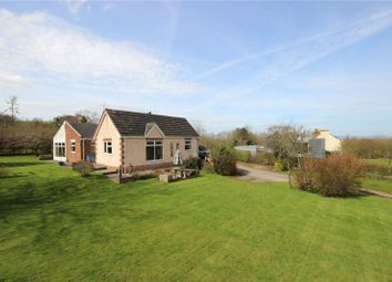 Thumbnail 5 bedroom detached bungalow for sale in Hollywood Lane, Easter Compton, Bristol