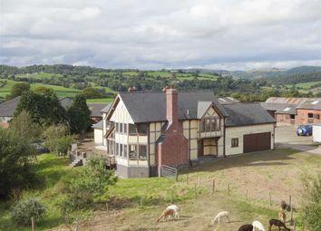 Thumbnail 5 bed farm for sale in Collfryn, Trefnanney, Meifod, Powys